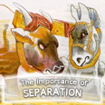 The Importance of Separation